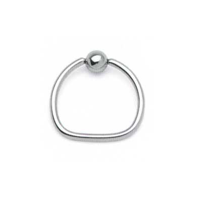 PRE-ORDER Steel D ring