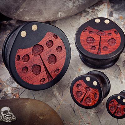 Gaboon Ebony Ladybird Plugs