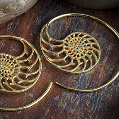 14K gold plated nautilus design