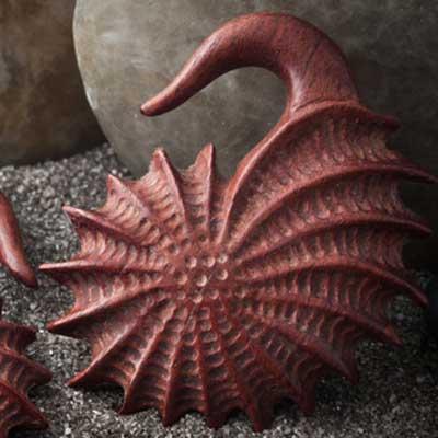 Bloodwood Mollusk Design