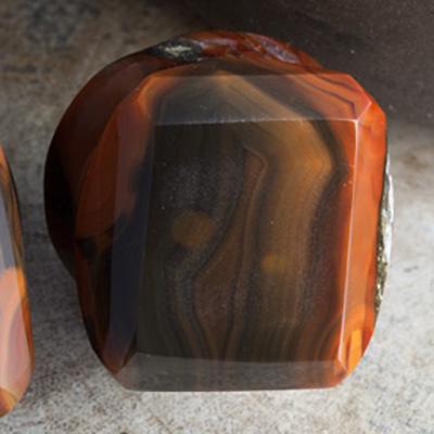 Condor agate faceted plugs