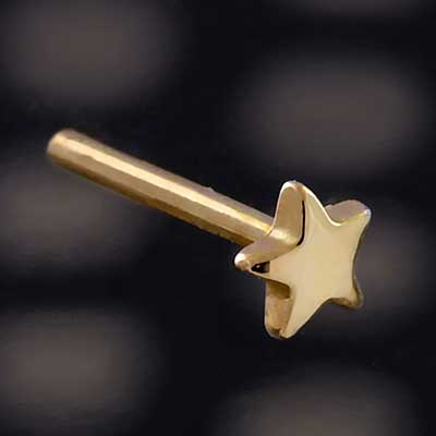 14k Yellow Gold Threadless Star End