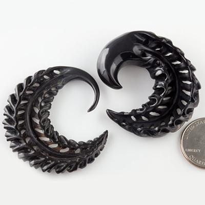 Black horn Fern Hoops
