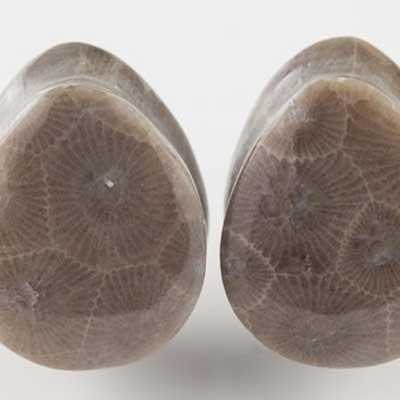 Petoskey (Fossilized Coral) Stone Teardrop Plugs