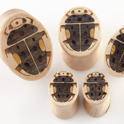 Curly Maple Beetle Plugs