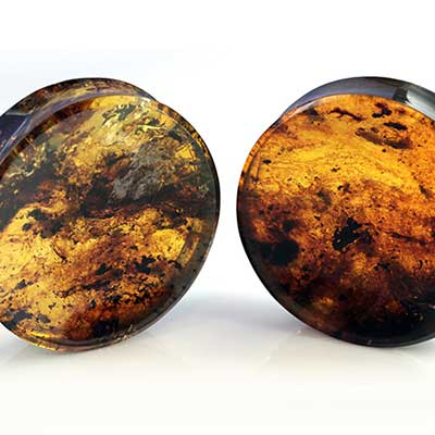 Chiapas amber plugs