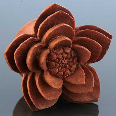 Sabo wood starburst plugs