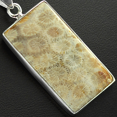 Fossilized Coral Silver Necklace