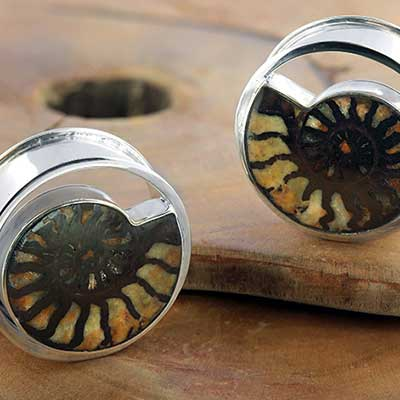 Silver ammonite plugs