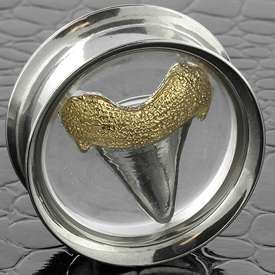 Double Flare Steel Megalodon Tooth Eyelet