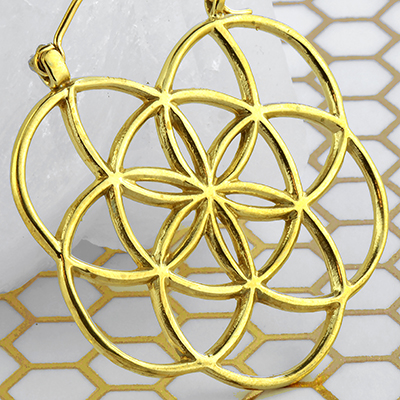 Solid brass flower of life hoop earrings