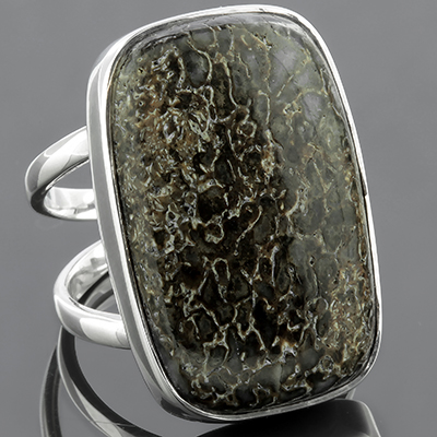 Silver and Dinosaur Bone Ring