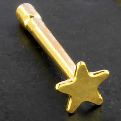 Gold plated star nosebone