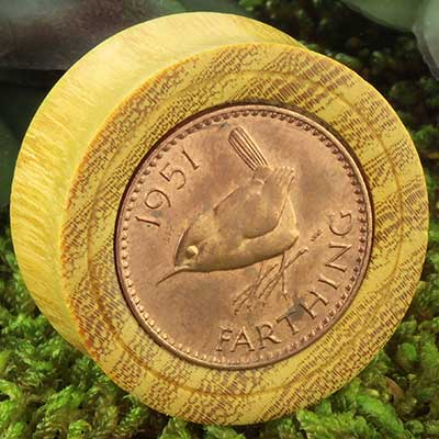 Osage Orange Plugs with British Coin Inlays