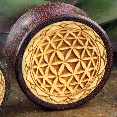 Dark Tamarind Seed of Life Plugs