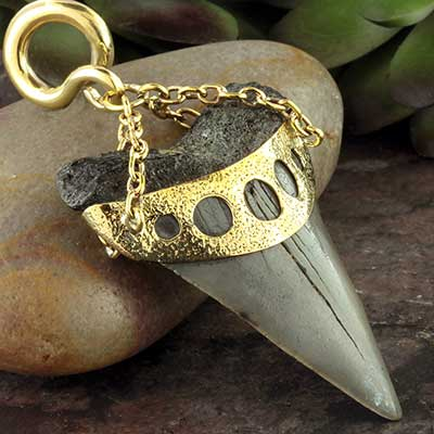 Solid brass and megalodon teeth weights