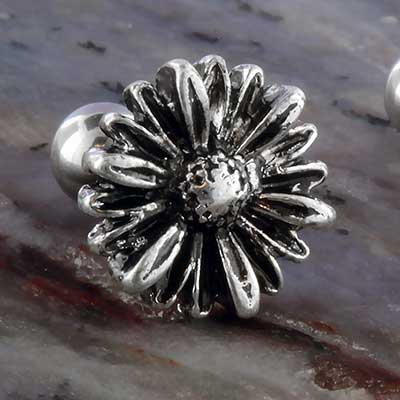 Steel aster flower barbell