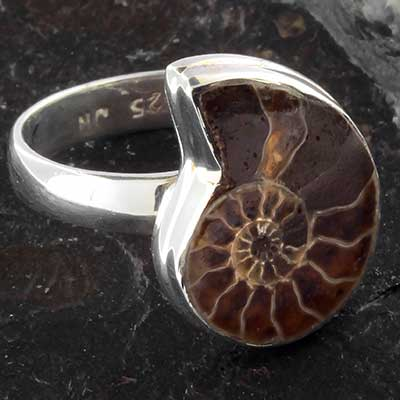 Silver Ammonite Ring