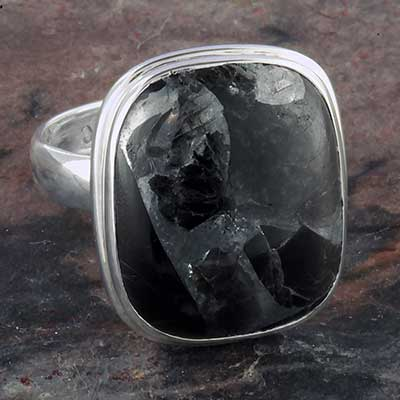 Silver and nuummite ring