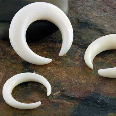 Bone Septum Crescent