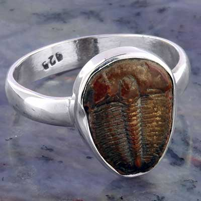 Silver and Trilobite Ring