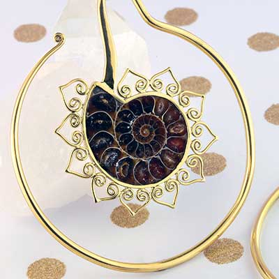 Sun Ammonite and Brass Coil Weights