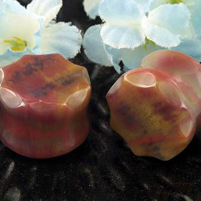 Petrified Wood Faceted Crown Plugs