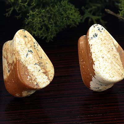 Picture Jasper Teardrop Plugs