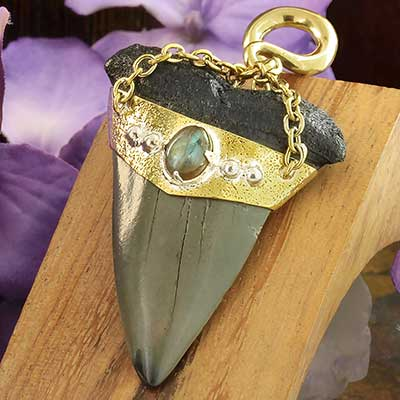 Solid Brass and Megalodon Teeth Weights with Labradorite