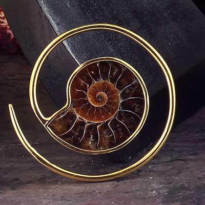 Brass and Ammonite Spiral Weights