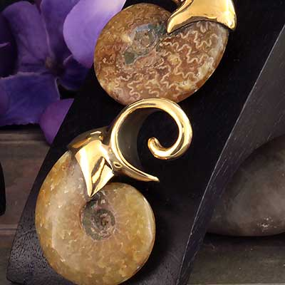 Brass and Ammonite Fossil Weights