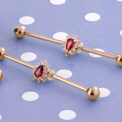 Red Radiance Industrial Barbell