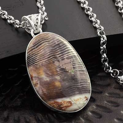 Fossilized Wood and Silver Necklace