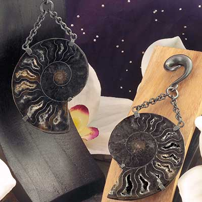 Oxidized Silver and Black Ammonite Weights