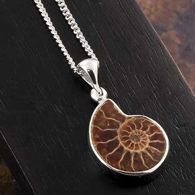 Ammonite and Silver Necklace