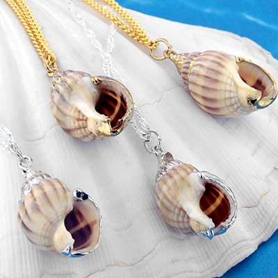 Nassa Shell Necklace