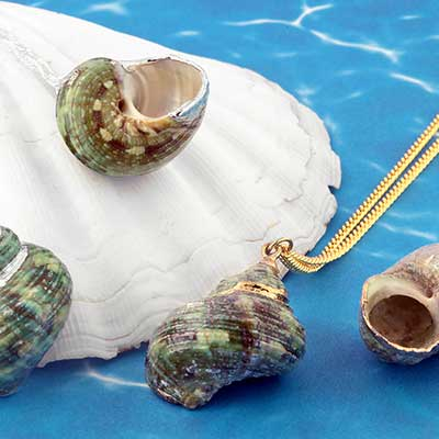 Turban Shell Necklace