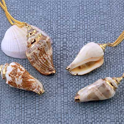 Conch Shell Necklace