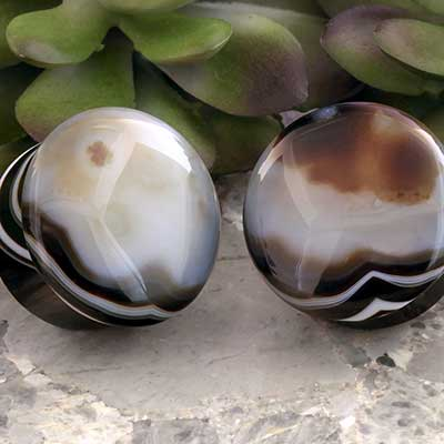 Single Flare Black Agate Plugs