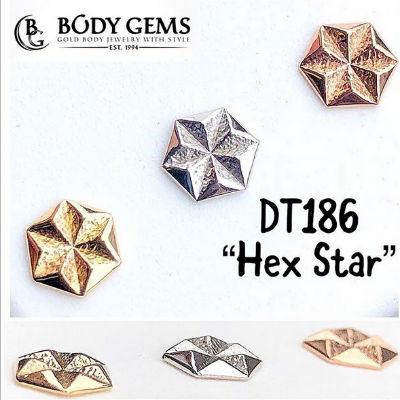 PRE-ORDER 14K Gold Hex Star End