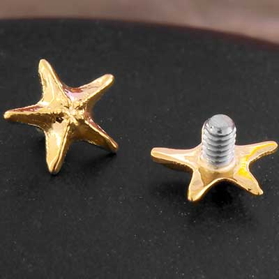 18K Gold Sea Star Threaded End
