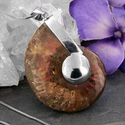 Opalized Ammonite Necklace