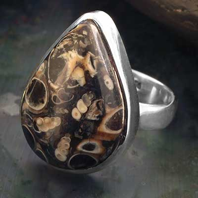 Turritella Agate Teardrop Ring
