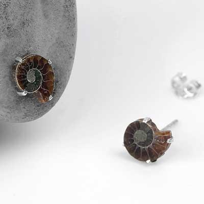 Mini Ammonite Stud Earrings