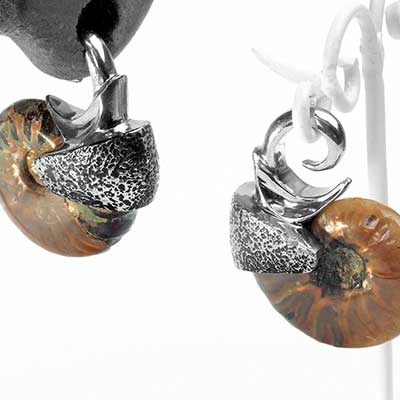 Oxidized White Brass Ammonite Weights