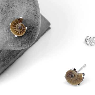 Mini Ammonite Stud Earrings