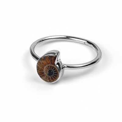 Silver and Dainty Ammonite Ring