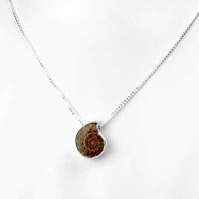 Silver and Ammonite Necklace