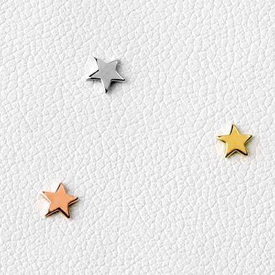 14k Gold Star Threadless End