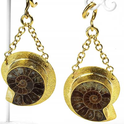 Solid Brass and Ammonite Dangles